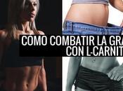 Combatir grasa L-carnitina posible carni...