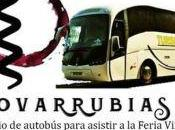 Feria Vinos Historia 13-14/05/2017 Covarrubias