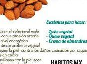 Antojitos sanos Healthy Snacks: Almendras