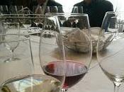 Errazuriz Aconcagua Costa Chardonnay Pinot Noir: novedosa apelación comienza hablar