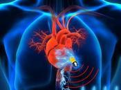 Implantes médicos capaces obtener energía propio cuerpo.