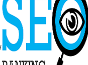 Manual SEO: Conocer como posicionar