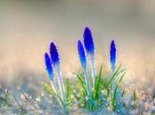 Consejos para Renovarse Primavera