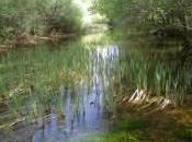 agua llevan Sierra Norte…