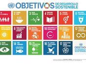 Objetivos Desarrollo Sostenible: analiza dónde eres experto aporta máximo valor