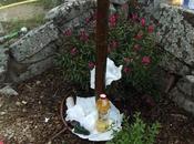 Cómo limpiar cola adhesiva antihormigas troncos árboles