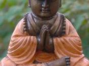 ¡Gracias! curso Intro Budismo está completo
