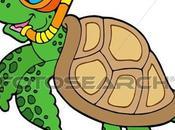 Patrones Tortugas