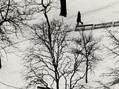 André Kertész fotografías