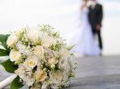 mercado bodas, nueva apuesta Colvin