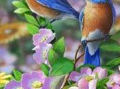pájaro posado rama...