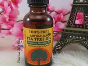 Aceite Arbol Tree