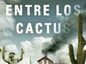 casa entre cactus