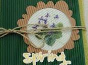 Mini album Spring