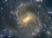 ✨Galaxia espiral 7424