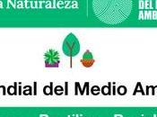 OeLeXear artículos segunda mano respiro medio ambiente