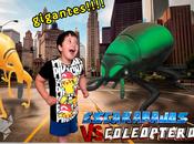 Escarabajos Coleopteros