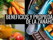 Propiedades Beneficios Zanahoria caracterí...