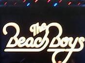 estilo Californiano Beach Boys