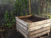 Preparación sustrato nuevo bancal para cultivar fresas fresones
