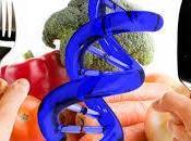 Conocer alimentos transgénicos
