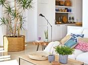 casa fresca natural junto Mediterráneo