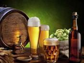 Este sábado inicia festival cerveza bocas