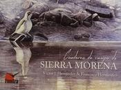 Reseña 'Cuaderno campo Sierra Morena' Diario Ávila