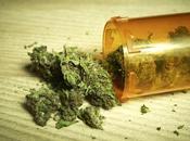 marihuana sistema inmunológico