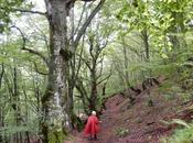 Ruta Bosc Carlac desde Les. Valle Arán