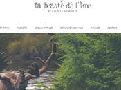 Belleza para novias: Beauté L'ame