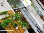 Garten true food, comida sana natural para celíacos frente parque retiro madrid