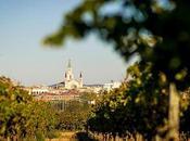 Rutas entre viñedos Villafranca Penedés.
