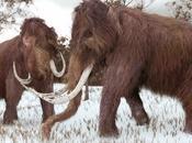 años mamut volverá vida