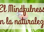Mindfulness naturaleza experiencia