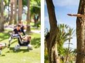 Carlos Leisure Resort valor práctica deportiva personalizada través Sport Experience Host