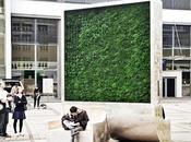 CityTree invento limpia aire ciudades como arboles