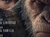 verdadero planeta grandes simios