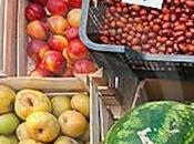 Cambiar dieta mejor receta para reducir huella carbono (2/2)