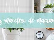 Macetero macramé PASO