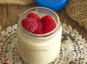 Yogur soja yogurtera consejos