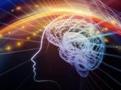 cerebro mujeres activo hombres?
