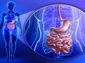 Infecciones intestinales parásitos ténia