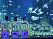 Mixología submarina