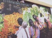 Gastronomía mercado