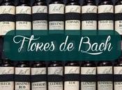 Flores Bach Cambios Vuelta cole