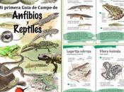 primera Guía Campo Anfibios Reptiles