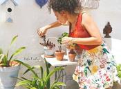 Cómo cuidar plantas presentación primera guía