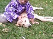 Autismo perros como mascota: beneficios.