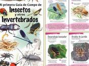 primera Guía Campo Insectos otros Invertebrados